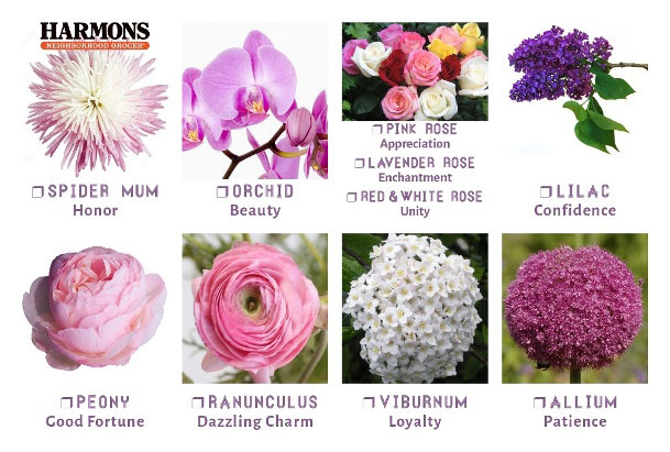Flower meanings blog harmons check out these other flower meanings mightylinksfo