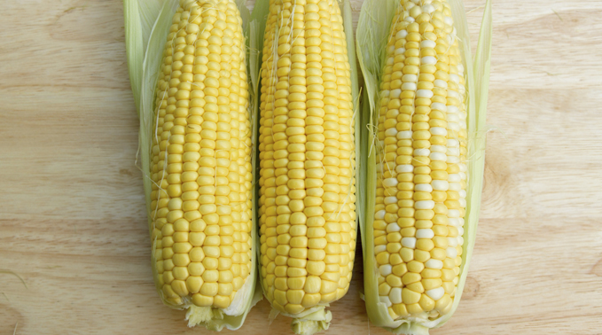 August Peak of Season: Corn