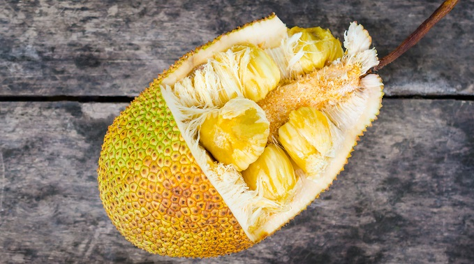 Jack Fruit: A Real Jack of All Trades