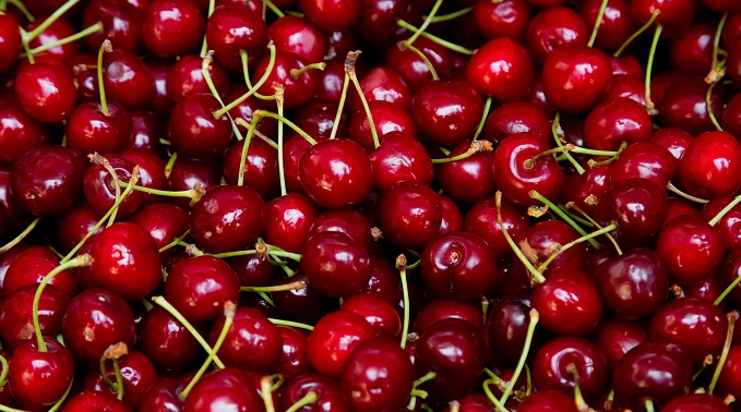 Peak of Season: Cherries